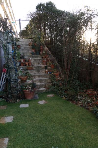 芝庭と階段の様子