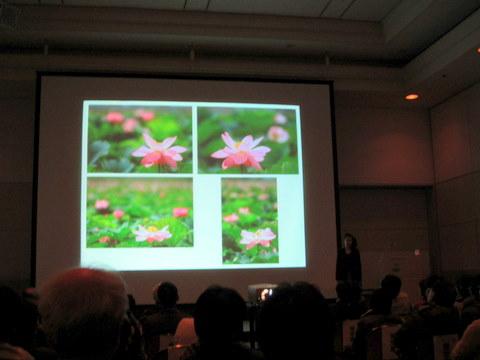 花撮影セミナー(構図2)