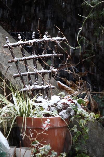 雪のトレリス