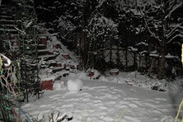 夜の雪景色