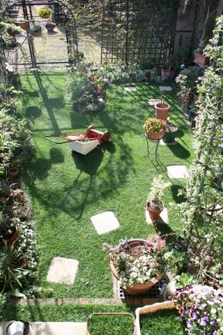 芝刈り完了1