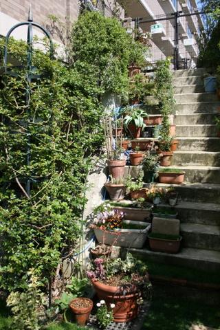 階段の様子2010/3/27