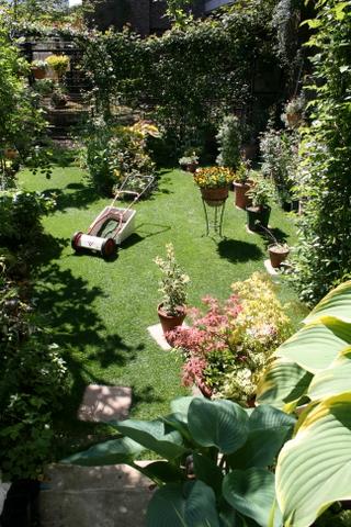 芝刈り後の庭2