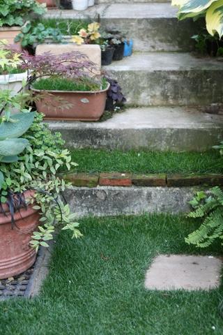 養生中の予備の芝