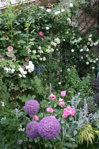 花壇とフェンス