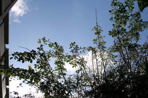 今朝もclear sky