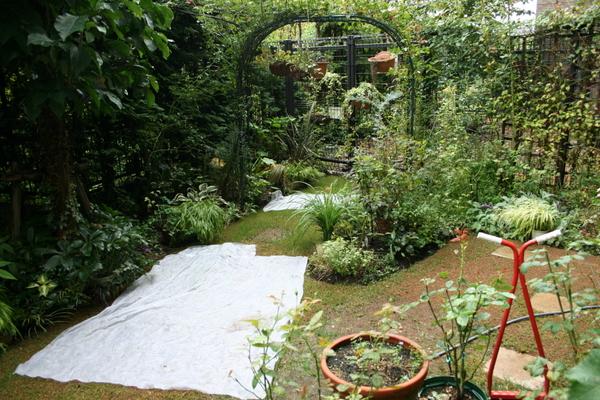 不織布シートで強雨対策