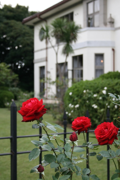 イギリス館の庭