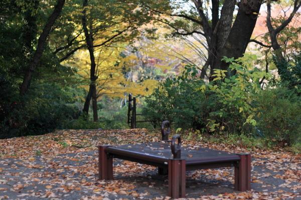木立の中の散策路1