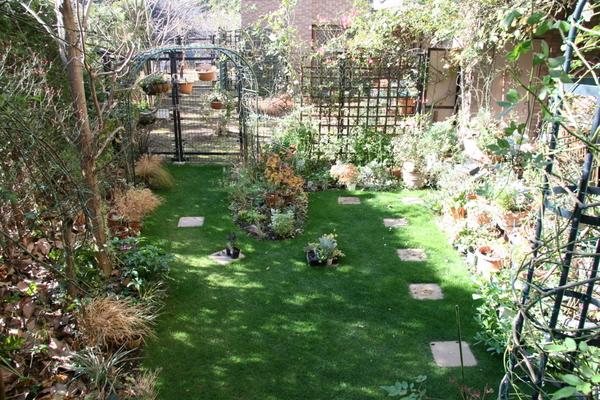 冬至の芝庭