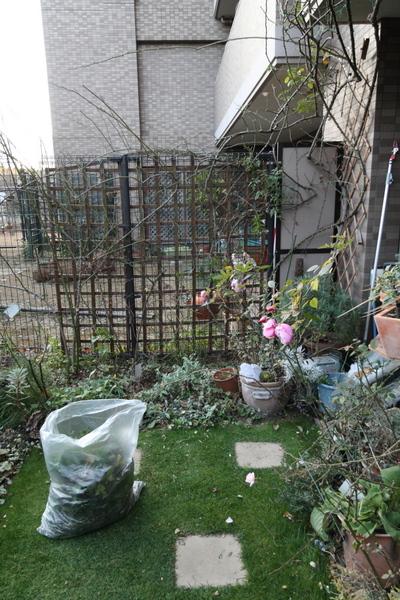 花壇、フェンスの作業