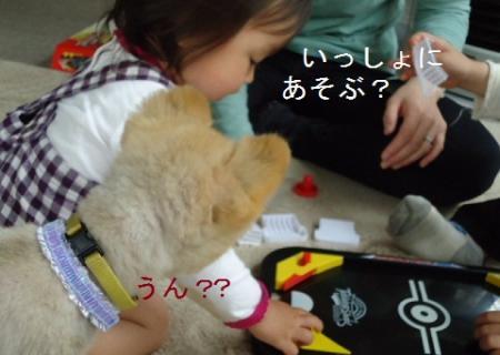 DSC01083_convert_20110425151343.jpg
