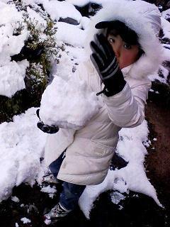 snow220091221_20091221110832.jpg