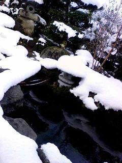 snow320091221_20091221110801.jpg