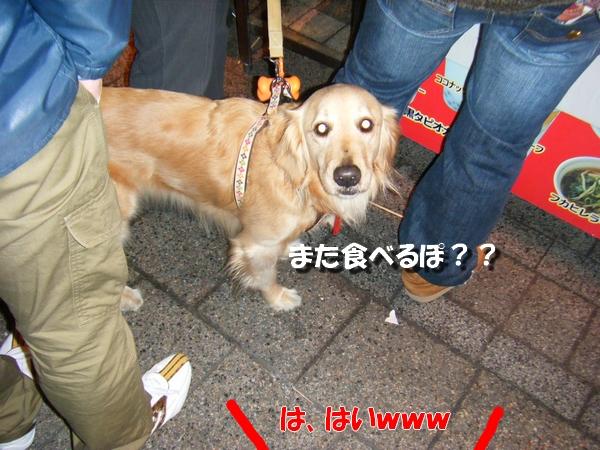 DSCF0039_20110207234728.jpg