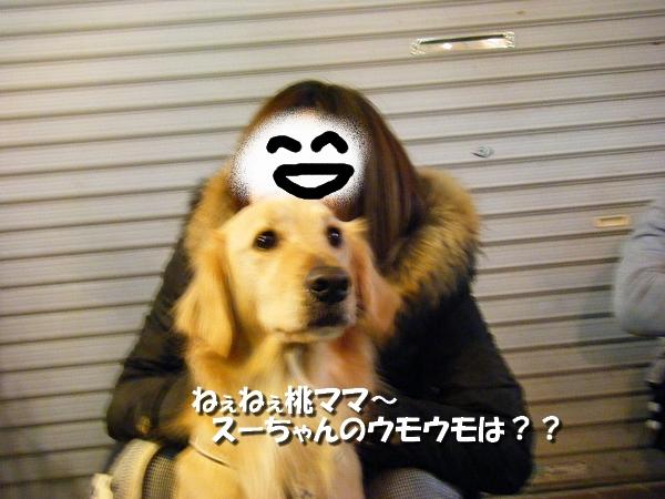 DSCF0100_20110207232407.jpg