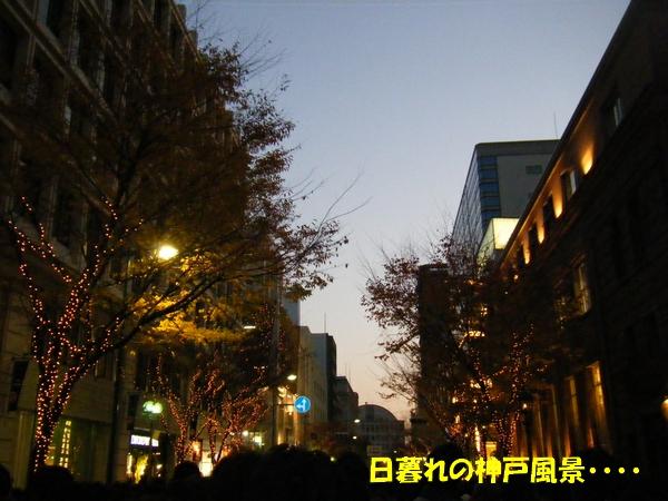 DSCF5113.jpg