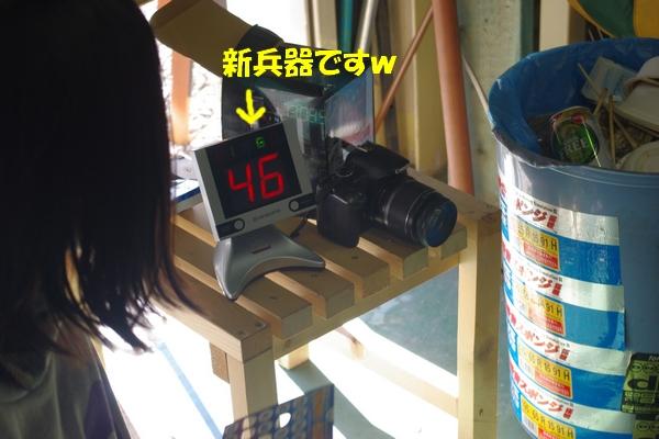 IMGP7249_20110124114706.jpg