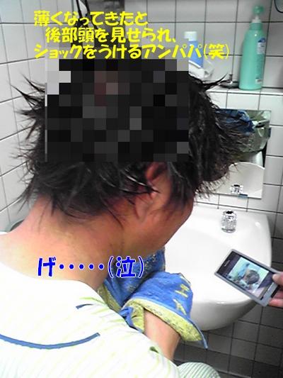 SH010192.jpg