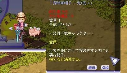 TWCI_2011_1_14_16_25_56.jpg