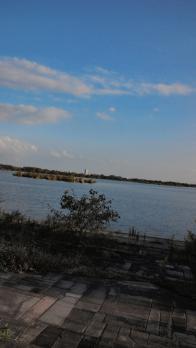 渡良瀬公園111016-6