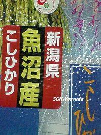 2011.1.27 魚沼産 こしひかり 袋