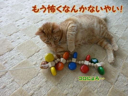2_20110614085611.jpg