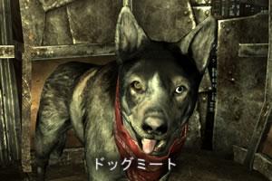 dogmeat2.jpg