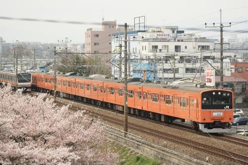 オレンジ×桜