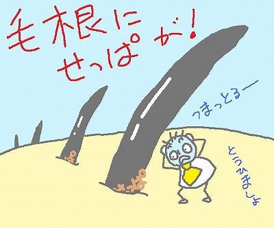 s-091229touhi.jpg