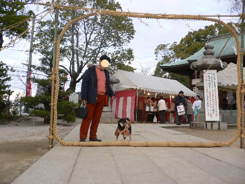 にぎ津神社 かやの輪くぐり