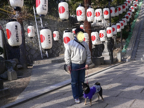 11.01.10 邇保姫神社02