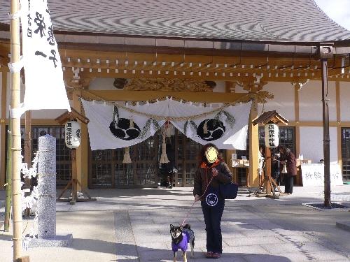 11.01.10 邇保姫神社03