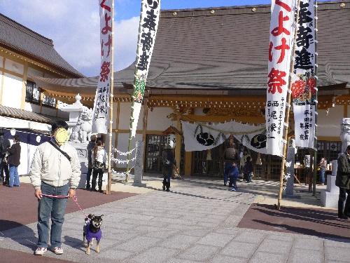 11.01.10 邇保姫神社04