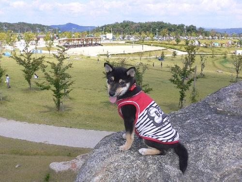 09.09.13  せら夢公園4