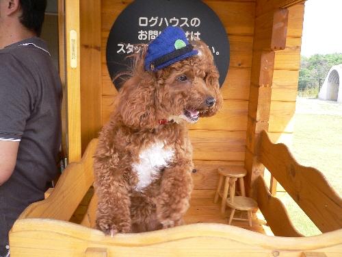 10.09.20 せら夢公園5