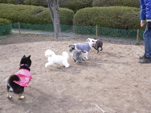 竜王公園1