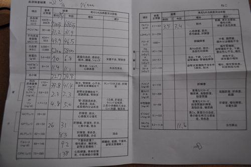 DSC_7857.jpg