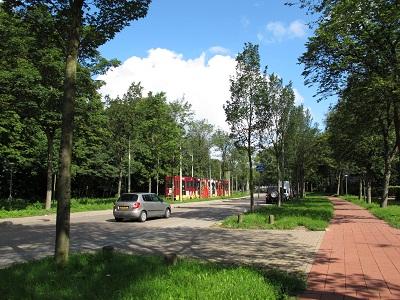 holland3 (1)