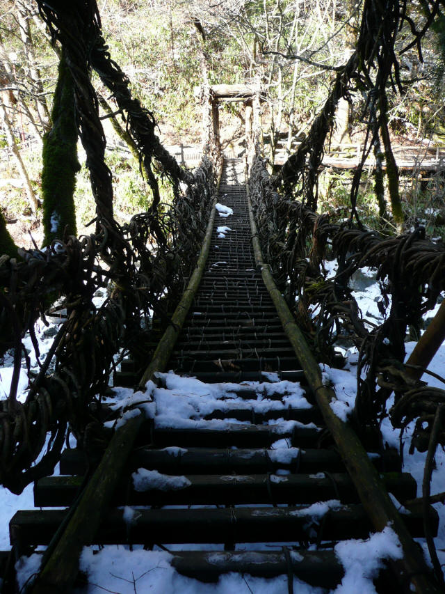 かずら橋(女橋)2