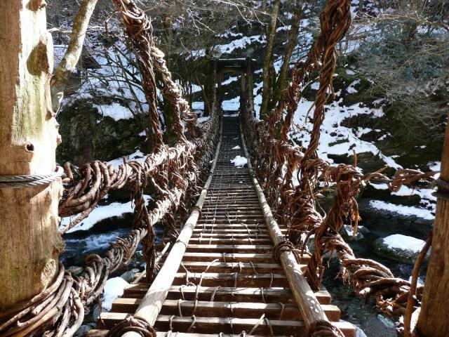かずら橋(女橋)7