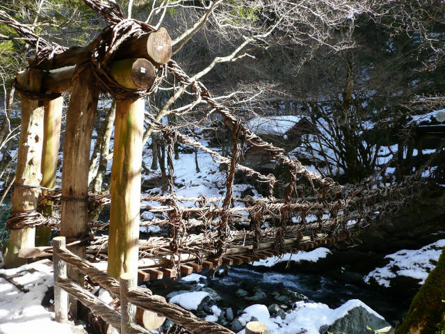 かずら橋(女橋)8