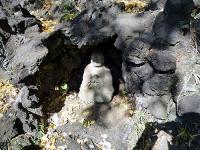 千駄ヶ谷の富士塚身禄像