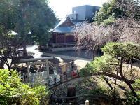 千駄ヶ谷の富士塚からの眺望