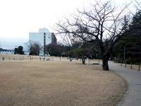 平中央公園