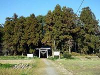 井椋神社社叢