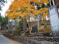 参道の奉納碑と紅葉