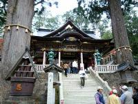 ご神木と社殿