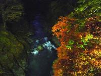 荒川と紅葉