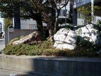 開成中学校 校門前